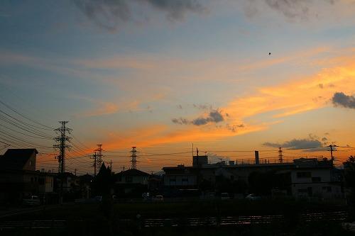20150904_hisabisanoyuhi_3.jpg