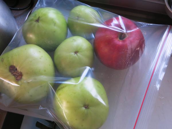 リンゴと青いトマト