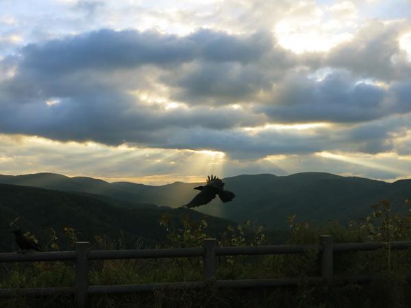 国道393 展望台 天使のはしご