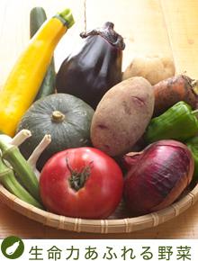 top_bt_vegetable.jpg