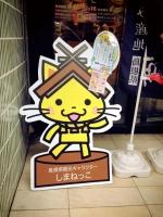 stp2015_3shimane_shimanekko.jpg