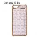iPhone 5 5s Case Der weibe Rauber blue gold1