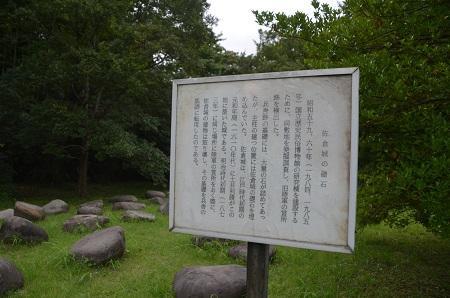 20150825佐倉城址公園08