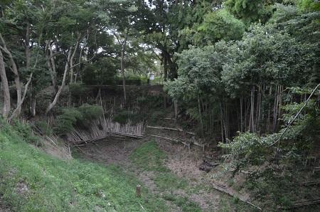20150825佐倉城址公園13