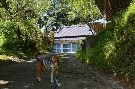201250921鳥名木館跡05