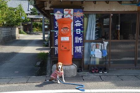 20150930丸ポスト伊03