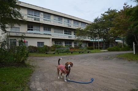 20150930湯ケ島小学校09
