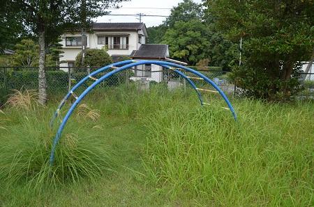 20150930湯ケ島小学校23