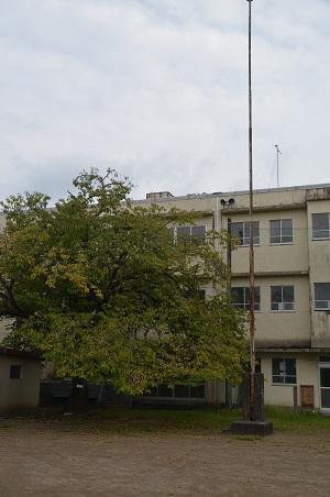 20150930湯ケ島小学校28