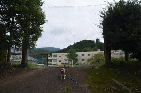 20150930湯ケ島小学校25