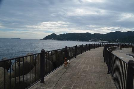 20151002長浜海浜公園10