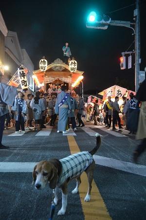 20151009佐倉の秋祭り①17