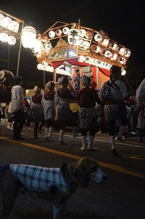 20151009佐倉の秋祭り①25
