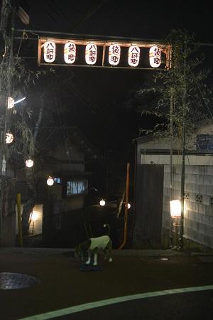 20151010佐倉の秋祭り②29