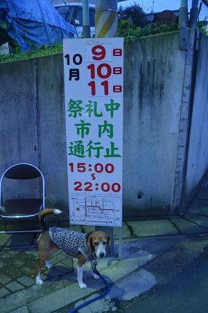 20151011佐倉の秋祭り③02