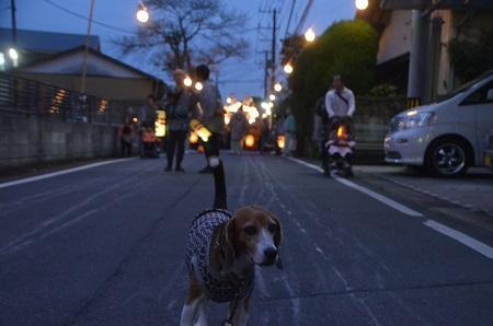 20151011佐倉の秋祭り③16