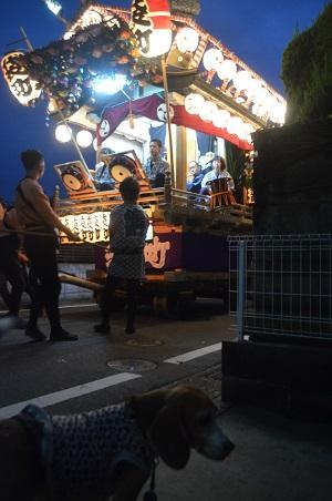 20151011佐倉の秋祭り③21