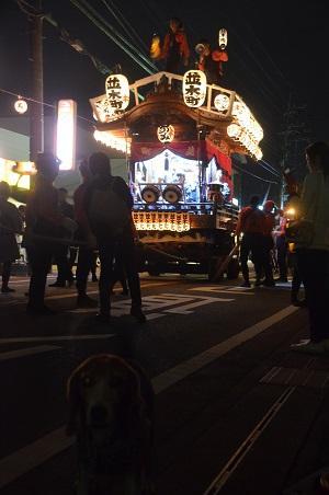 20151011佐倉の秋祭り③28