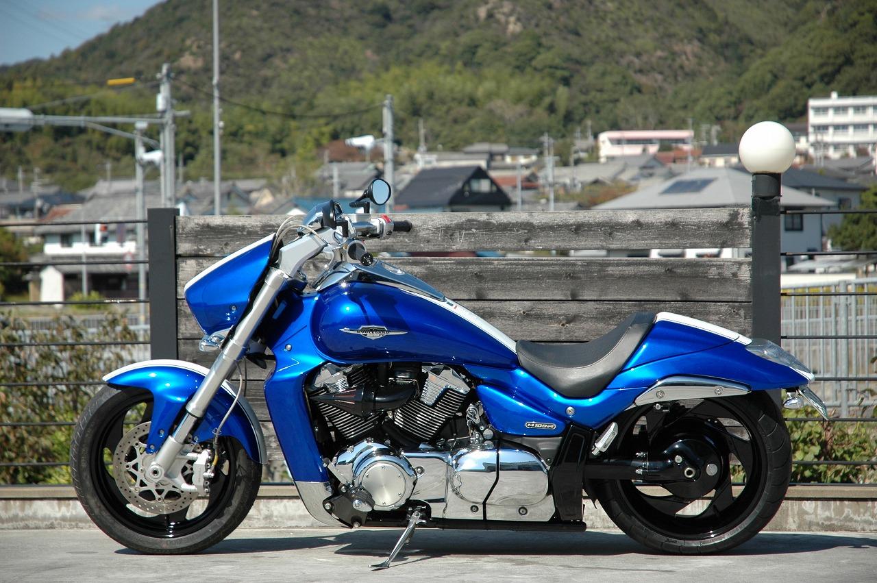 151019-bluebird-2.jpg