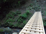 新しい木橋