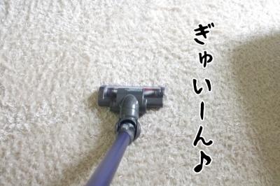 IMGP1459-1.jpg