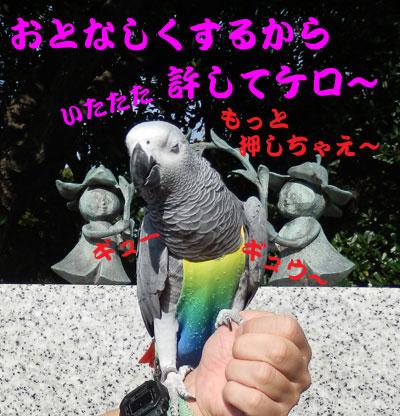 5_お仕置き2
