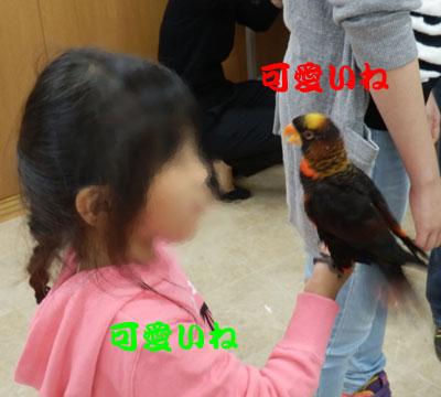 11_お嬢ちゃんとピンナ