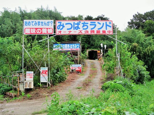 8 15.9.10 ヒガンバナ・土手付近サイクリング (68)