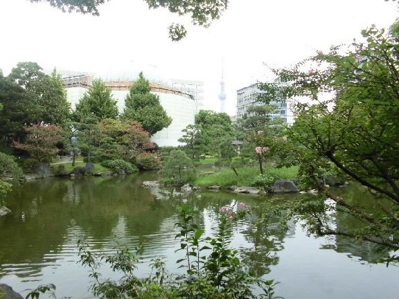 15.9.16 鞠子と両国 (12)