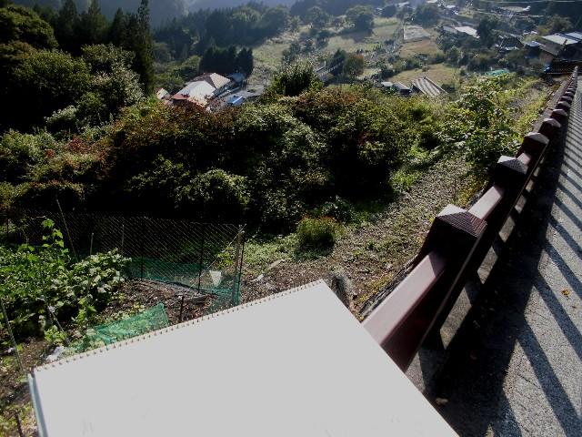 1 15.9.28 栃本地区・カシオ (212)