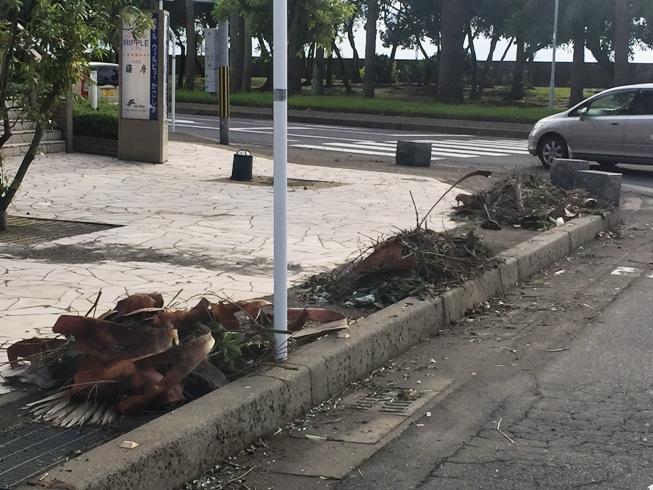 台風被害6