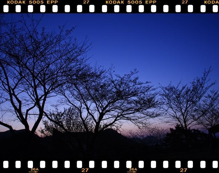 八重山12