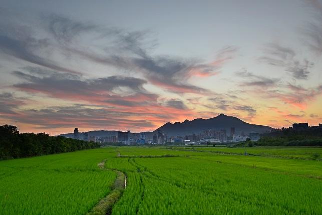 田園地帯の夕暮れ(2)