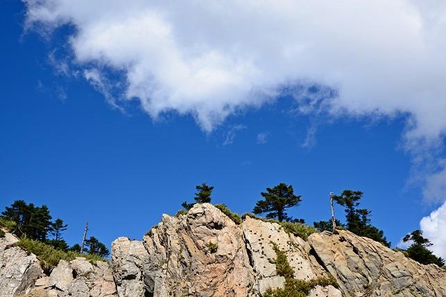 紅虎杖が咲く山で(4)