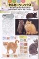 猫カタログ2
