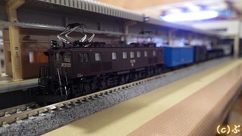 IMGP5055.jpg