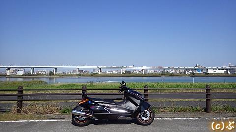 IMGP5330.jpg