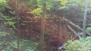 小泊木橋2(4)_600