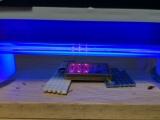 レジンを流して紫外線を照射