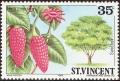 stsvn0206.jpg