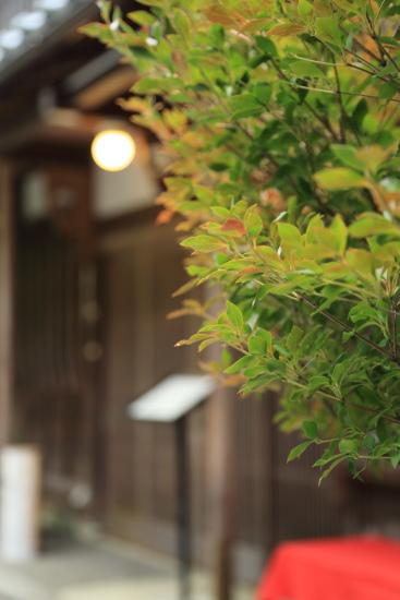 yamanaka onnsenn (2)