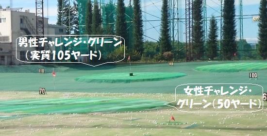 ワンオンチャレンジ・グリーン