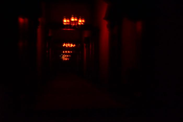 TDL 2015 ホーンテッドマンション 無限の廊下