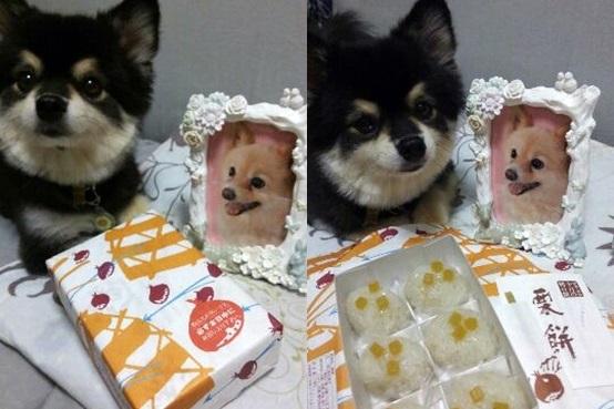 kurimochi151001_2-horz.jpg