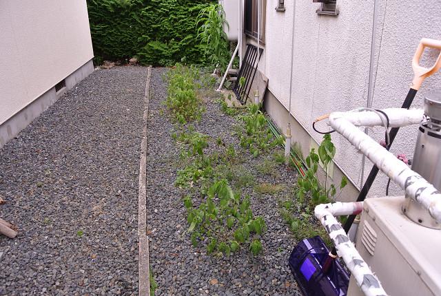 2015_08_23_01.jpg