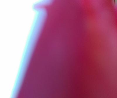 IMAG0328_1 (400x335)