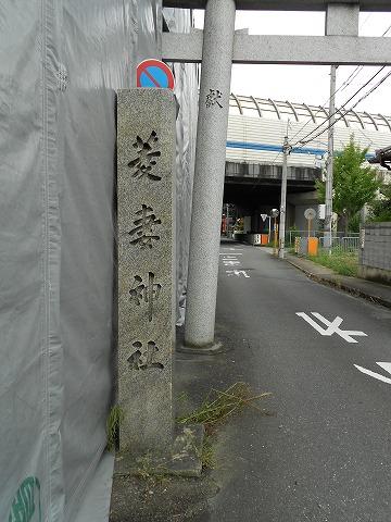 DSCN6342.jpg
