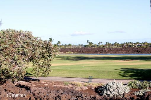 目の前、ゴルフ場