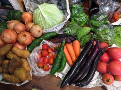 150907-31=野菜fm作畑農園