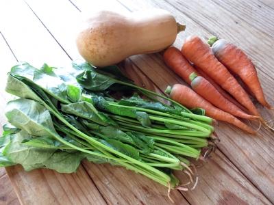 151019-41=nbk等s野菜